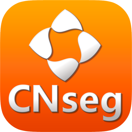 Logo CNseg